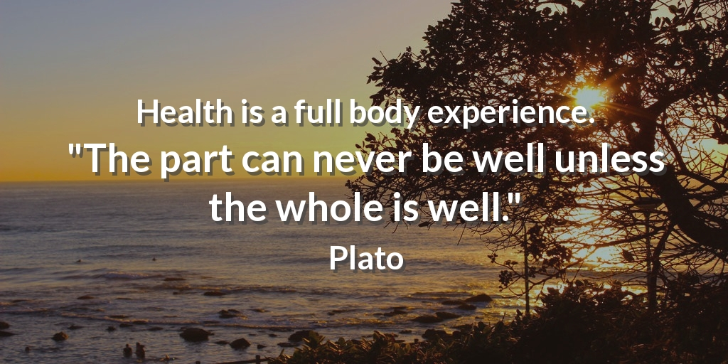 """Health is a full body experience. """"The part can never be well unless the whole is well."""" Plato #fitness"""