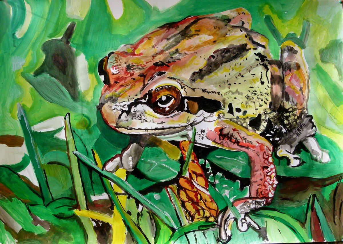 https://saatchiart.com/art/Painting-Frog/457748/7060379/view… #frog #animals #paintings #forsale #contemporary #modern #contemporaryart #green #acrylicpainting #fineart #partforsale #toad #paperart #visualart #artgallery #gallery #VisualArt #newartistpic.twitter.com/r520ip15Ek