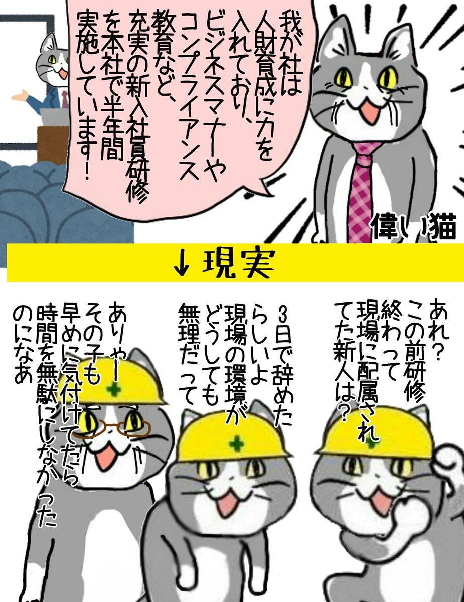 新入社員研修の弊害 #現場猫