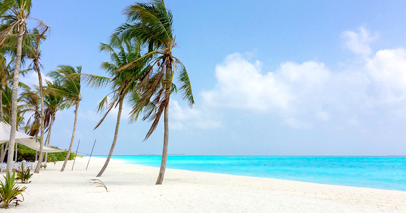 Pic of the Day…Ocean Breeze http://best-online-travel-deals.com  #travelphoto #beachlife pic.twitter.com/IlTpyV4S8g