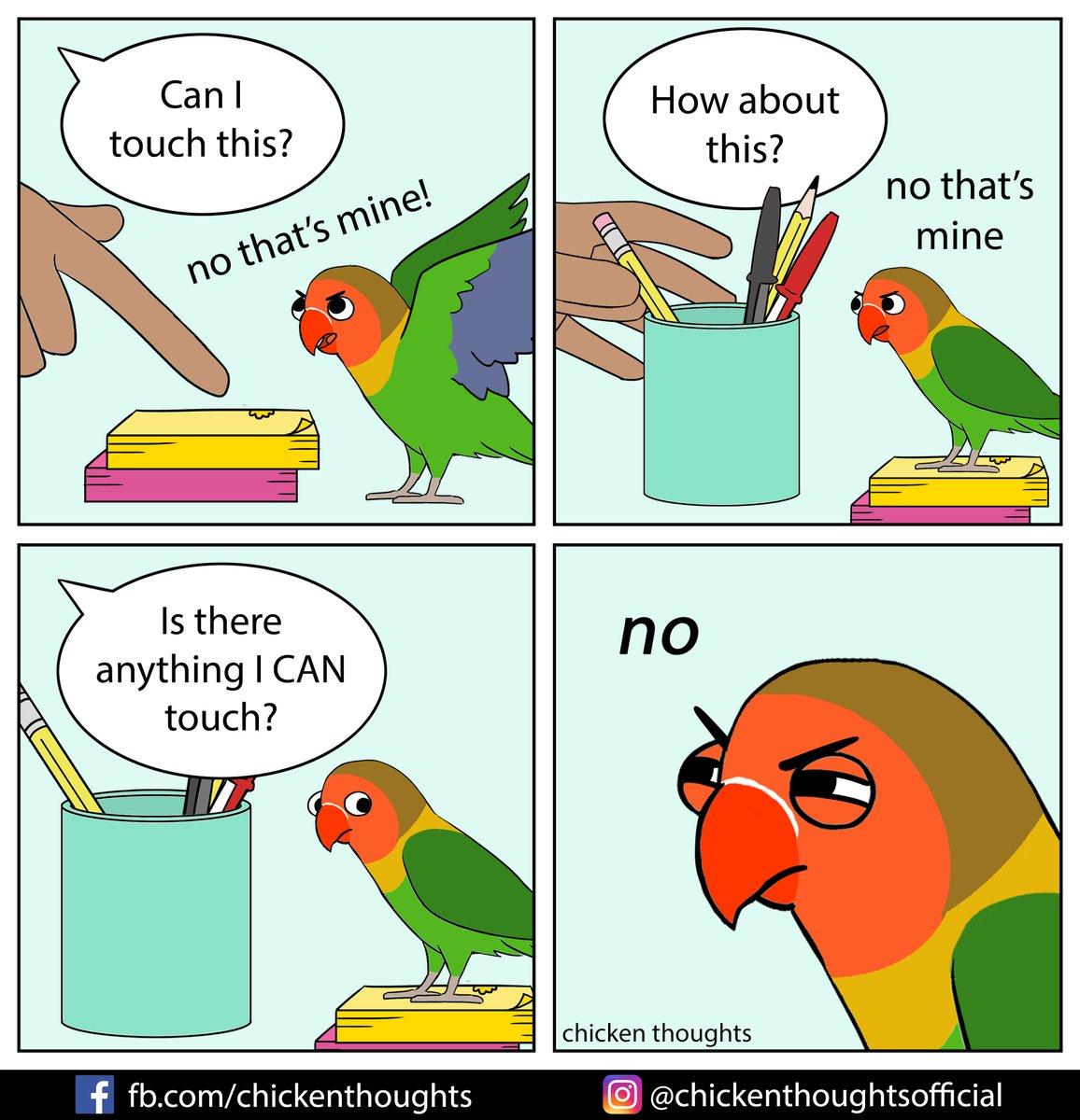 Featuring Ann's spicy mango! fb.com/MangoTheFische…