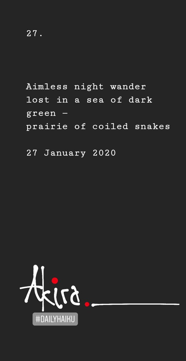 27.  Aimless night wander lost in a sea of dark green — prairie of coiled snakes  27 January 2020  ❄  #Winter #Haiku #DailyHaiku #OneHaikuPerDay #MondayThoughts #Poetry #Dream #Snakes #Night