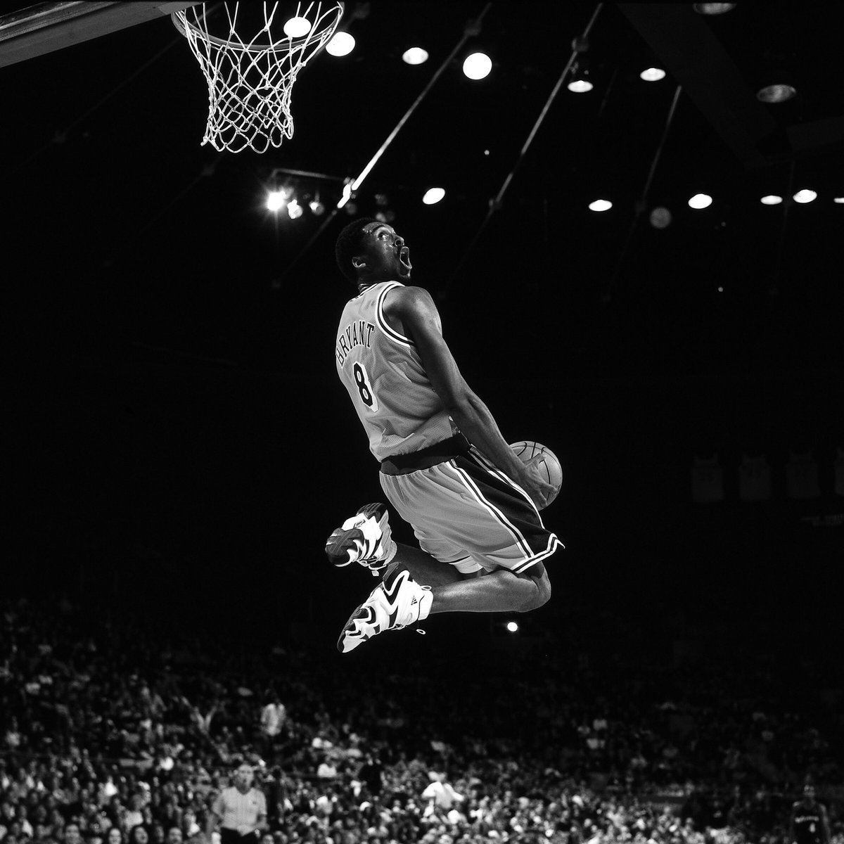 adidas basket heart