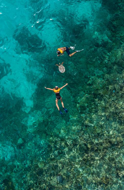 Upptäck undervattensvärldarna under Maldivernas kristallklara yta vid #ClubMedKani https://t.co/wF0PMwp9bN