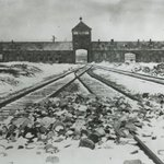 Image for the Tweet beginning: For the world #Auschwitz is