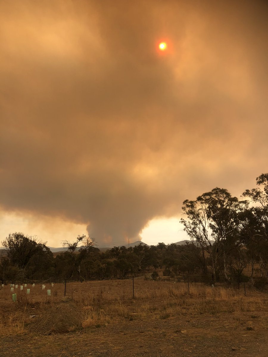 Canberra fires: worst bushfires threat since 2003, chief ...