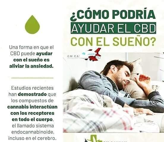 CBD ayuda al sueño. Aceite de cannabis CBD ¡Unete a nuestro Equipo! mas información WhatsApp: +34 606131605 o  #empleociudad #ofertaempleo #ofertatrabajo #tuprofesion #ingresosextra #ingresospasivos #autonomos #internet #exitoso #masdinero #tusector  #ctfo