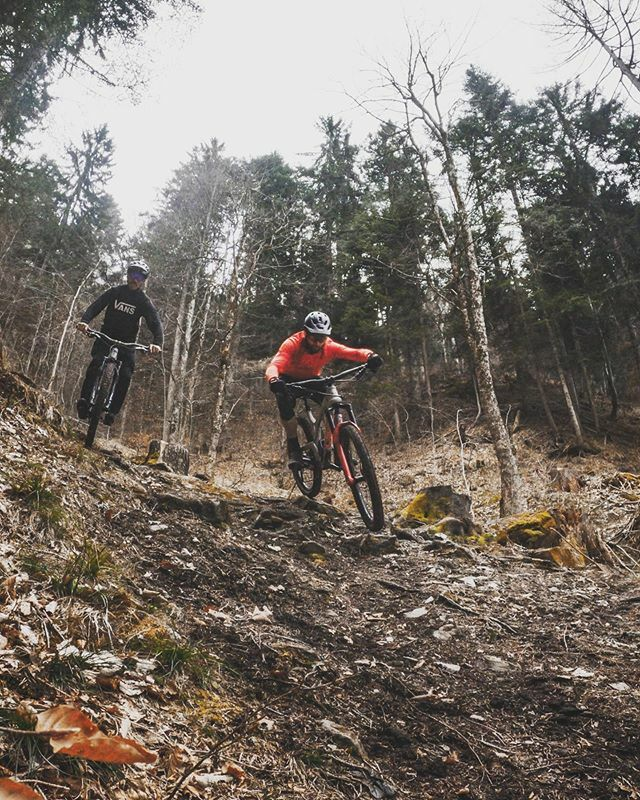 RT 2radwanderer: Some new trails, a never-again-uphill , a bit of loam and a lot of fun.  ... evilbicycles mtbswitzerland graubuendenbike ... #mountainbike #freeride #mtb #singletrail #outdoor #mtblife #plantbasedathlete #vegan #MountainBiking #lif… pic.twitter.com/m3VyIlXNxz