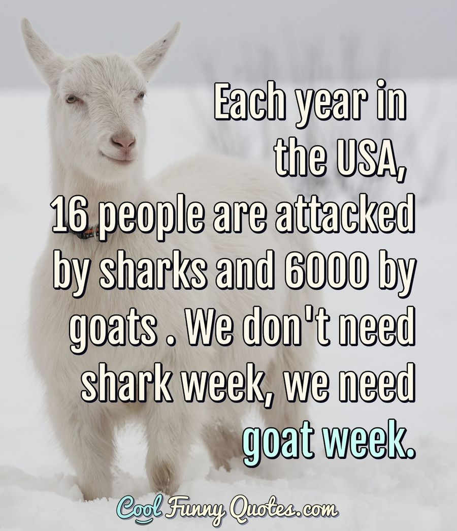 Each year in the USA, 16 people are attacked by sharks and 6000 by goats . We don't need shark week, we need goat week. #goat #shark #funny #sayings #sharkweek #hilarious