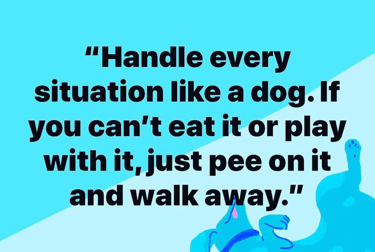 #frenchie  #frenchbulldog  #frenchies  #frenchbulldogs  #puppy  #dogs #DogsOfTwitter #FrenchBulldogsOfTwitter #FrenchiesOfTwitter #FrenchiesofInstagram also  @WipeHomophobia on Twitter,and @TrevorLeWoof on instagram.pic.twitter.com/RDqilkT3rS