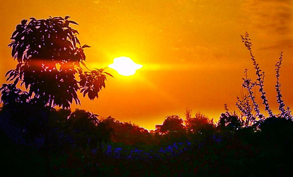 . . . . . . . . . .  Shoot_______by:@bhavesh____kumar . . . . . . . . . #photography #Nature_Lover #hot_shotz #best_photographer  #tourist #apna_bhai_photographers #timepass #holidayseason #modi #indian_photography_hub #indianclicks #instagram #instagoodpic.twitter.com/aUDcdODxGa