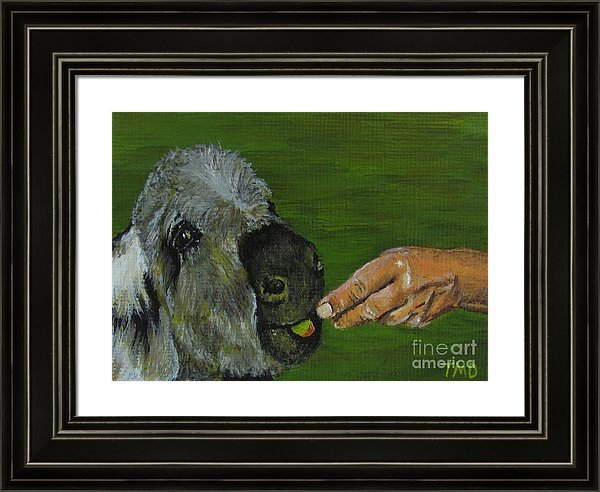 Check out this framed #fineart #print, featuring my #acrylicpainting, #Donkey Eating an #Apple.  #artcollector #animalart #giftideas #iloveart #art   https:// pixels.com/featured/donke y-eating-an-apple-tina-m-dimas.html?product=framed-print  … <br>http://pic.twitter.com/lhkRHnIwi0
