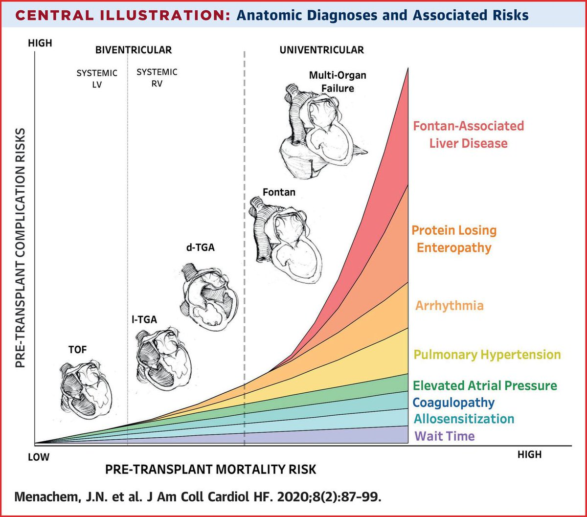 Advanced Heart Failure in Adults With Congenital Heart Disease heartfailure.onlinejacc.org/content/8/2/87