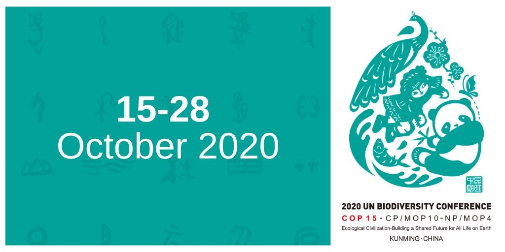 Mark your calendars‼️ The dates are set for this year's UN Biodiversity Conference. #COP15 will take place 15-28 October in Kunming, China. #Biodiversity2020 Learn more about the process to develop a new global framework to safeguard all life on Earth: cbd.int/conferences/po…