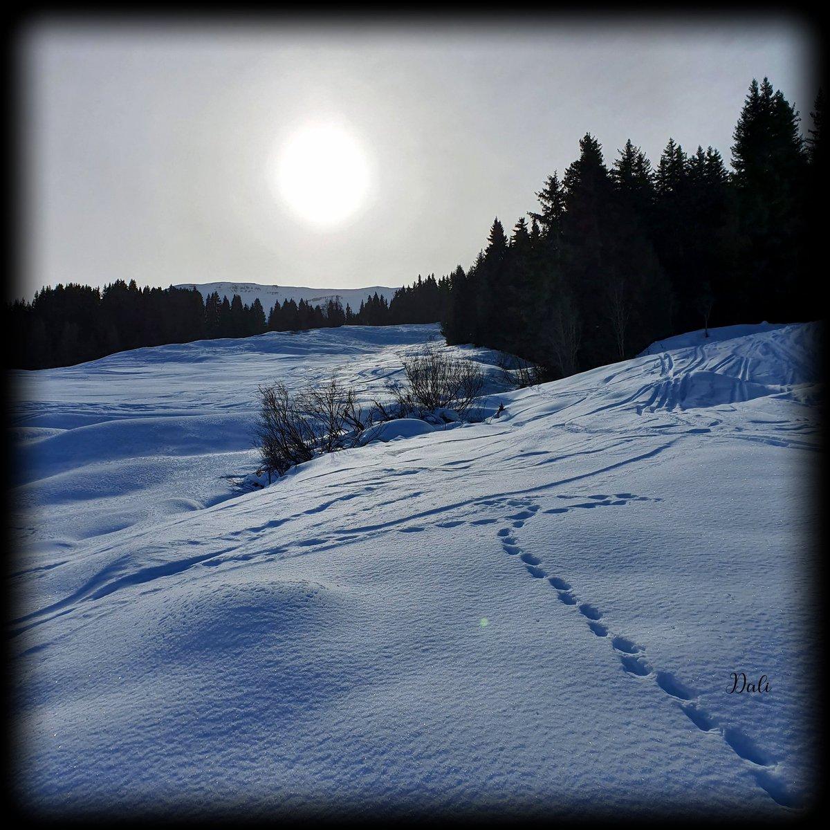 Let your beautiful light shine bright #graubunden #Switzerland #Schweiz #travelphotography #Travel #snow #hiking #picofthedaypic.twitter.com/H6fSxB4VDB