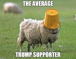 All for the sheep pic.twitter.com/PoZqvvbZSC