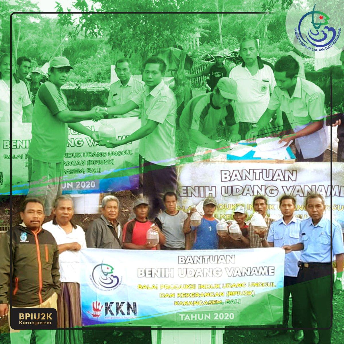 Bantuan pemerintah berupa 1 juta ekor benih udang vaname diberikan kepada pokdakan Raci 3 yang berlokasi di Desa Raci 3, Kec Bangil, Kab Pasuruan - Jawa Timur. Semoga bantuan yang diberikan bermanfaat. @Edhy_Prabowo  @s_soebjakto @BudidayaKKPpic.twitter.com/kXH51gmoIt