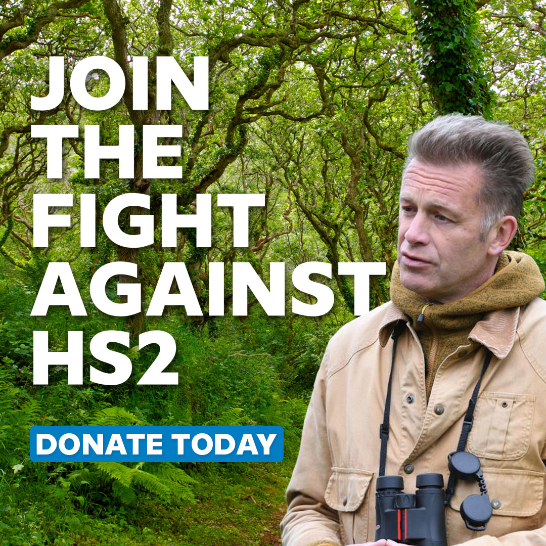 Its time we took action yet again , to stop this senseless destruction of our woodlands for an overinflated vanity project... yes , Im talking about @HS2Ltd . Tweet me your evidence of illegal behaviour with #HS2Evidence and donate to our crowdfunder at rebelforwild.life/rethink-hs2