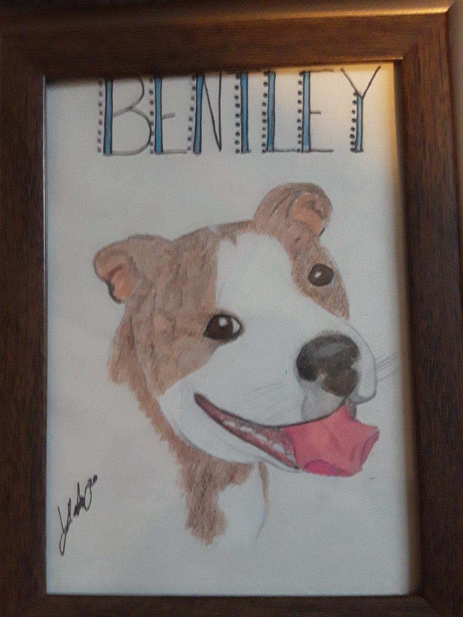 Still doing pet portraits!! $10 each!!pic.twitter.com/HukJb4mU5D