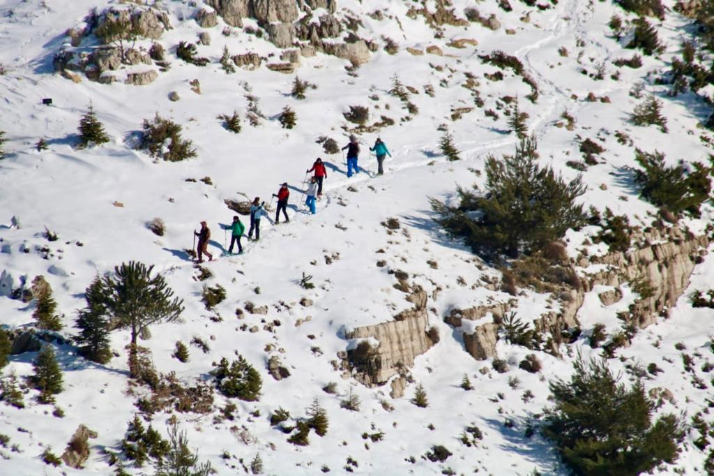 Nothing like leaving the roads and taking the trails for Snowshoeing in our majestic mountains. 🌨❄☀️🎿#ehden #winteractivities #wild #snow #trails #hike #wintersports #explore #nature #breathtakingview #adventure #horshehdenreserve #ehden2020