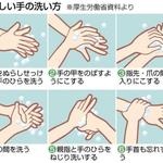 自分の身は自分で守る!正しい手の洗い方をしっかりとおさらいしておこう