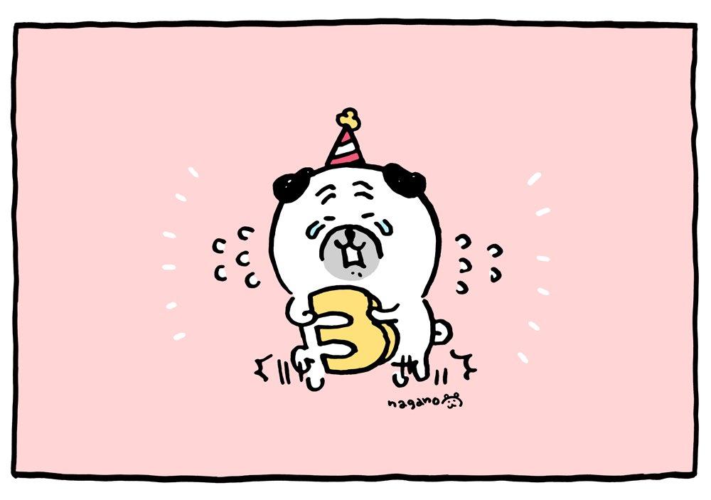 遅れてしまったのですが1月23日、パグさんがうまれてから3周年でした🎂パグさんを応援してくれている皆さま、本当に有難うございます。