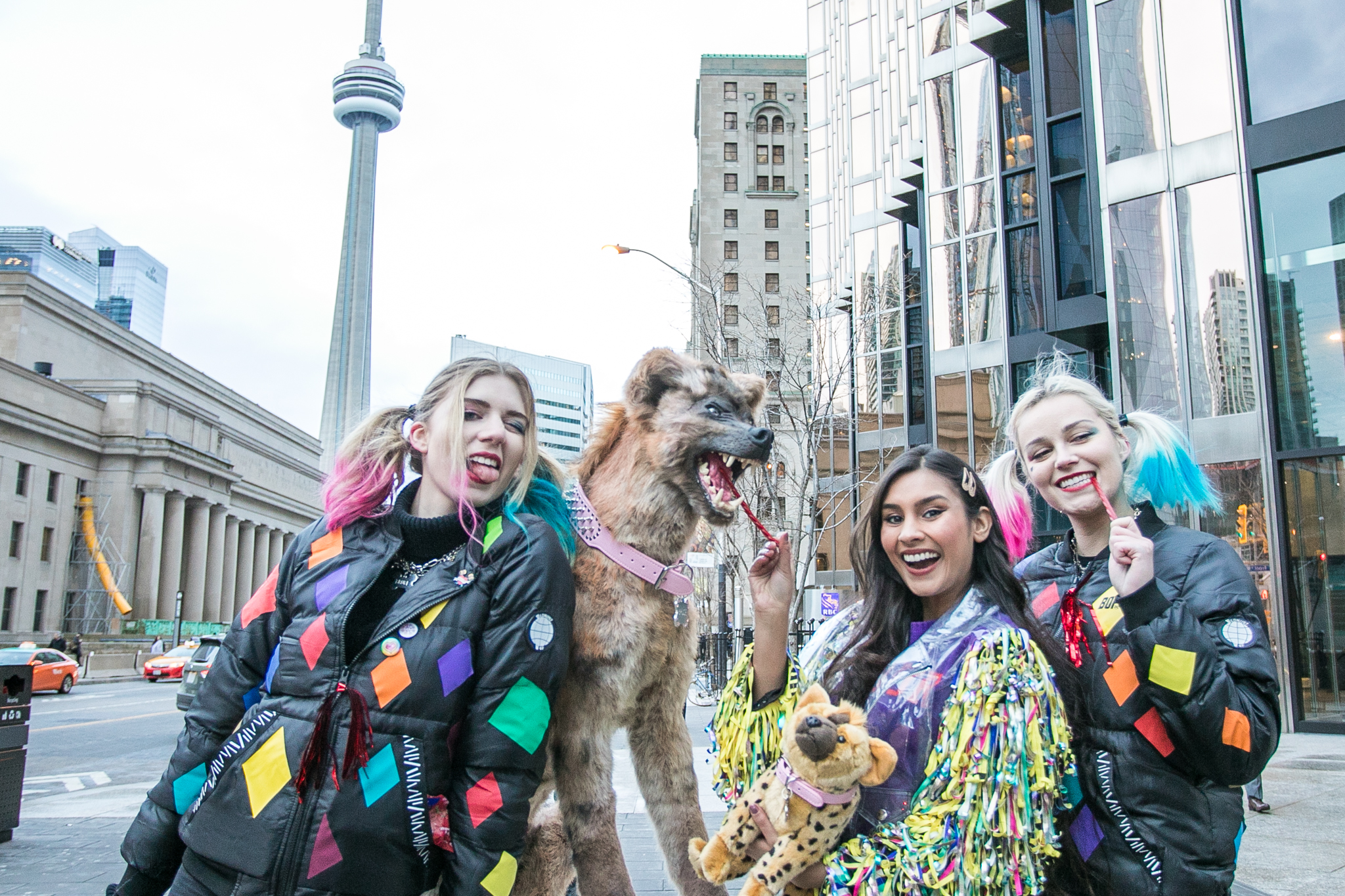 Blogto On Twitter Warnerbrosca Is Taking Over Toronto With Harley Quinn S Pet Hyena To Celebrate The Release Of Birdsofprey Catch Bruce At Yorkdale This Weekend From Thurs To Sat Bop Hits Theatres
