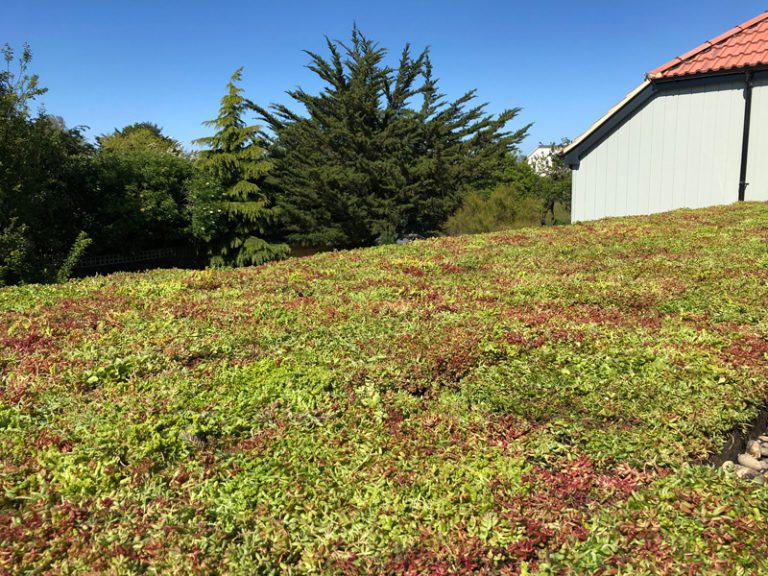 It's crucial to remember that green roofs can help to reduce both stormwater volume and rate of run-off entering the drainage system.  Find out more about the benefits of the M-Tray® -   #suds #environment #winter #construction #roofing #drainage