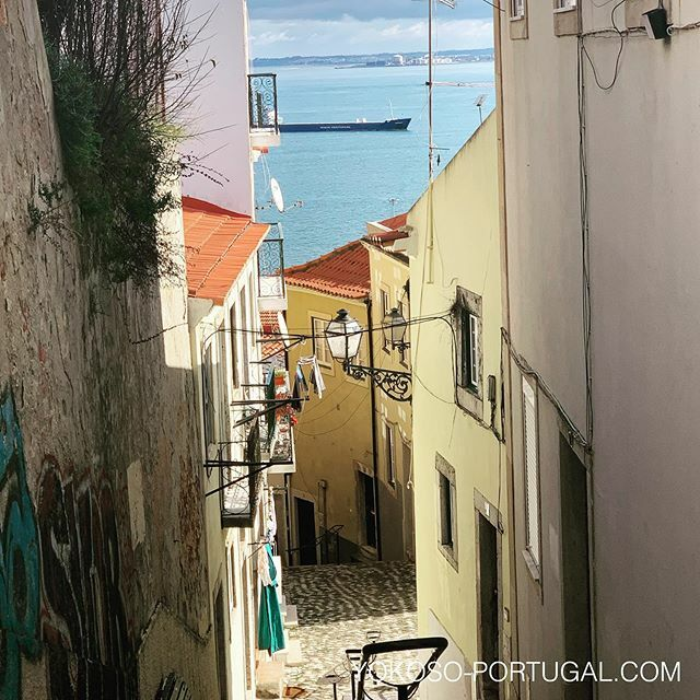 test ツイッターメディア - 細い路地が入り組むアルファマ地区。地図があっても迷ってしましますが、それもまたよし。 #リスボン  #ポルトガル https://t.co/OawIZIMtdi