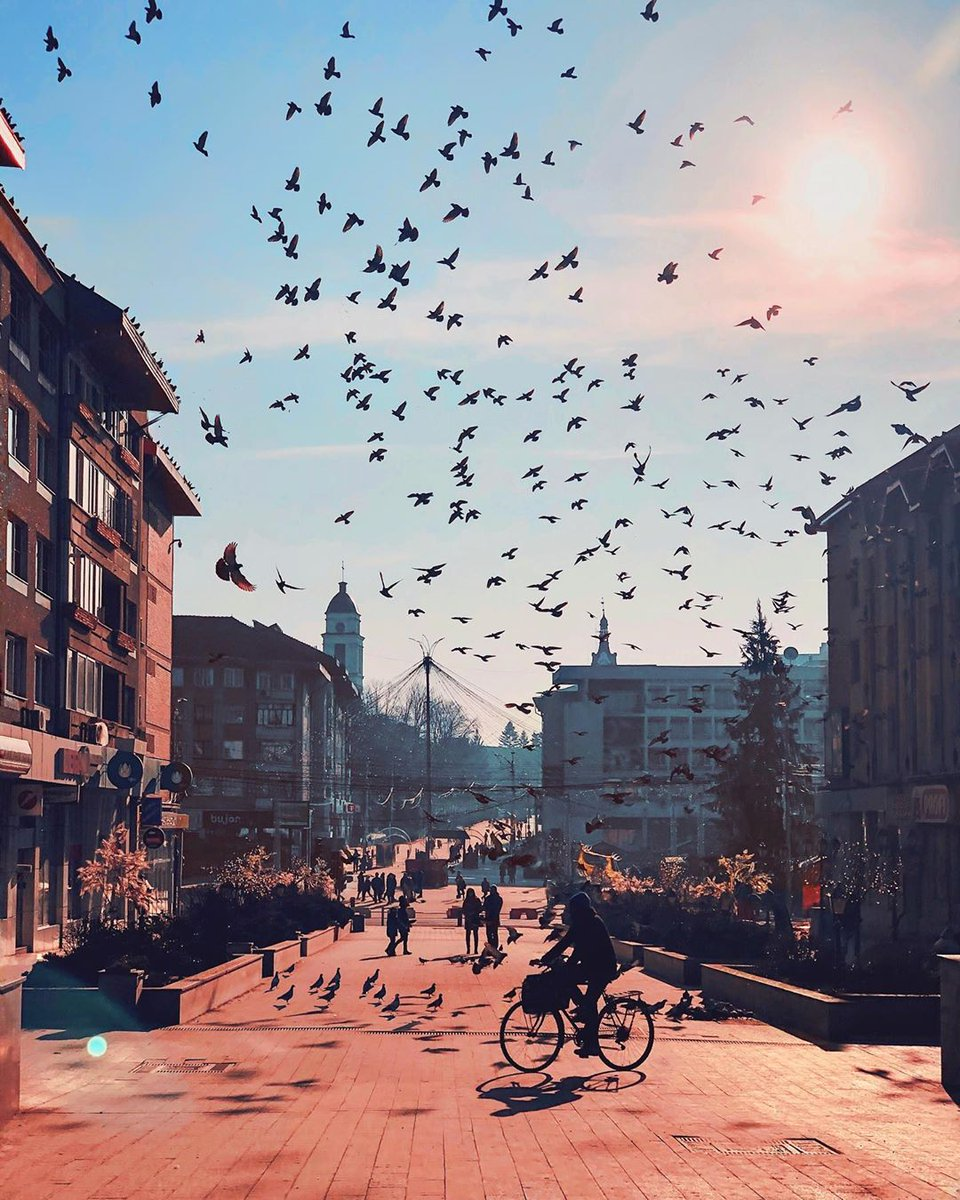 Traffic jam . . . . #suceava #bucovina #city_explore #romania #ig_europe #living_europe #ig_romania #cityscape #cronicaridigitali #ig_captures #citybestpics #igworldclub #tv_living #passionpassport #creatorswillcreate #arhitecturephotography… http://dlvr.it/RNv8nBpic.twitter.com/XsAIyYRWAV