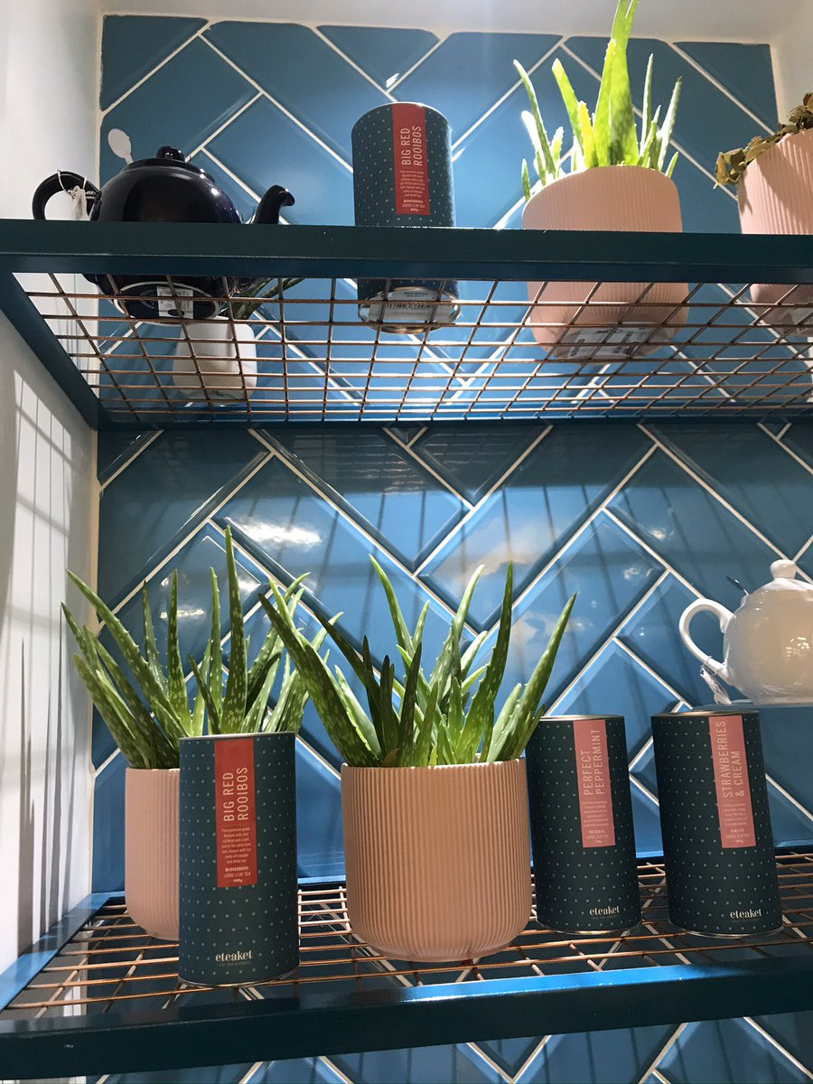 Can you keep plants alive? We decided to take the leap and green up our Concept Store. So far so good! Look at our babies, they grow up so quickly  #plantlife #conceptstore #eteaketpic.twitter.com/8yiilvPJGL