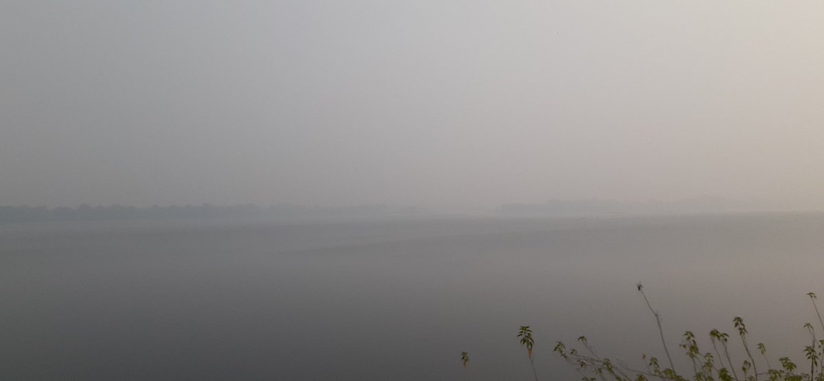 Govindgarh lake, rewa #naturephotography  #Nature