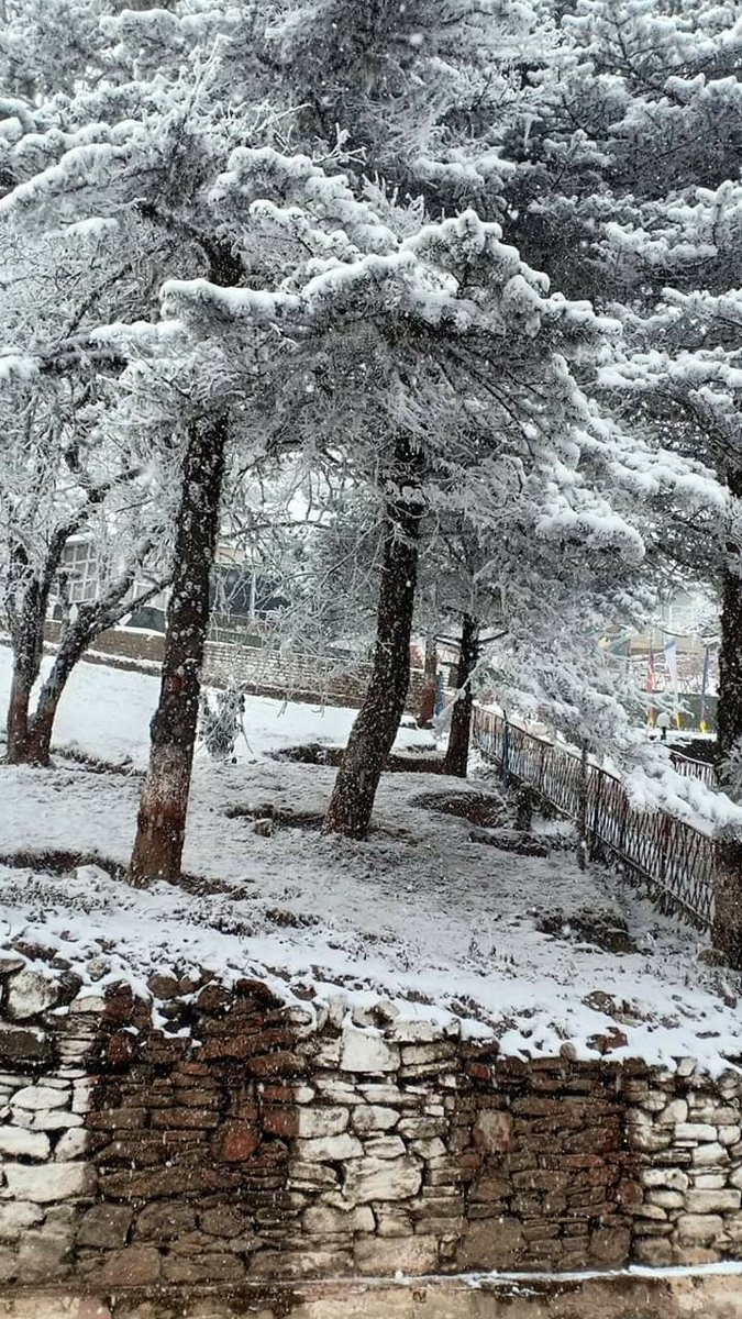 #true #nature India #Kashmir