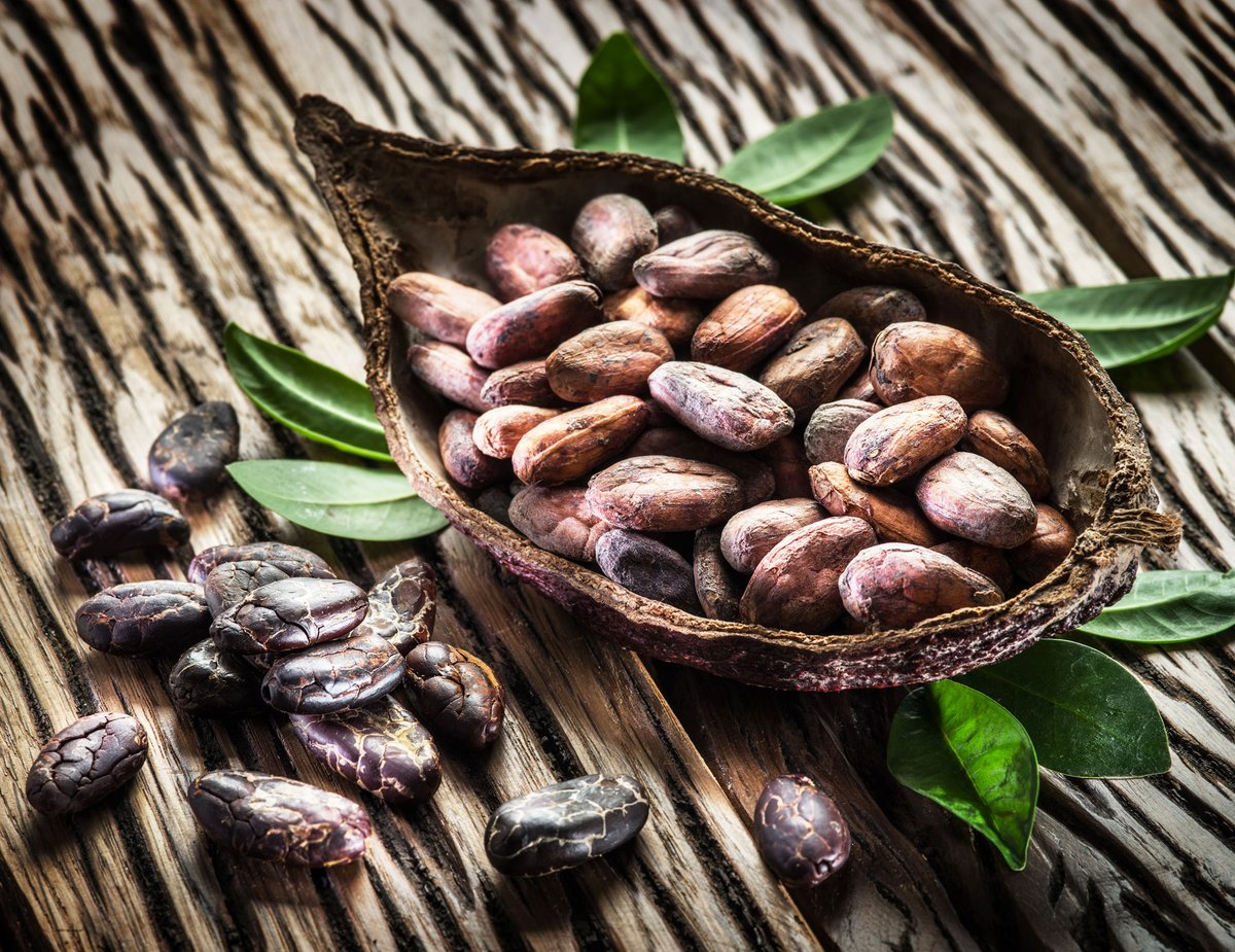 #ChocolateHistory - During the Aztec Empire, cocoa beans were used as currency & only eaten once their quality degraded.   #food #yummy #dessert #win #delicious #sweet #yum #foodporn