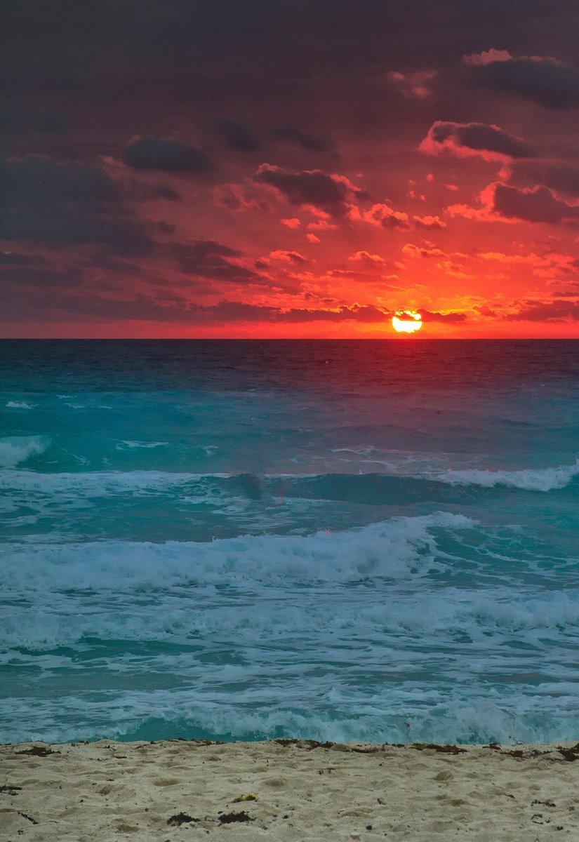 Cancún #Mexico #mex #playa #sol #Cancun #turismo #belleza #quintanaroo #atardecer #sun #sunset #sunsetphotography #sunsetlover #sunsetlovers #sunset_pics #atardeceres #atardeceresmagicos #atardeceresporelmundo #cun #nature #naturaleza #naturephotography #nature_perfectionpic.twitter.com/6WlDrn1PAp