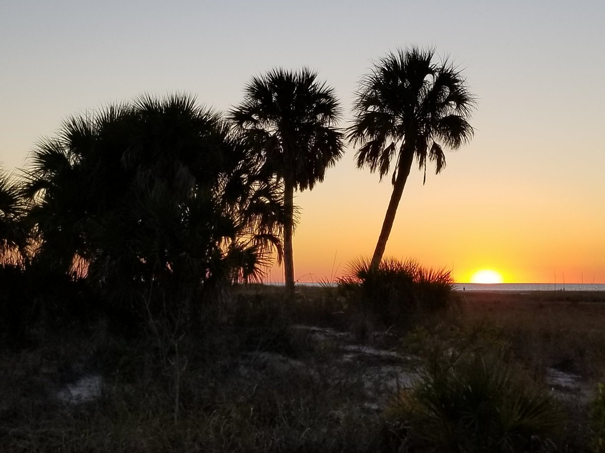Golden Hue. #sunset #sunsetphotography #FloridaWinter #Florida #FloridaLiving #FloridaLife #floridasunsetpic.twitter.com/vqmTOQ66rH