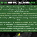 Image for the Tweet beginning: #CBD oil provides a great