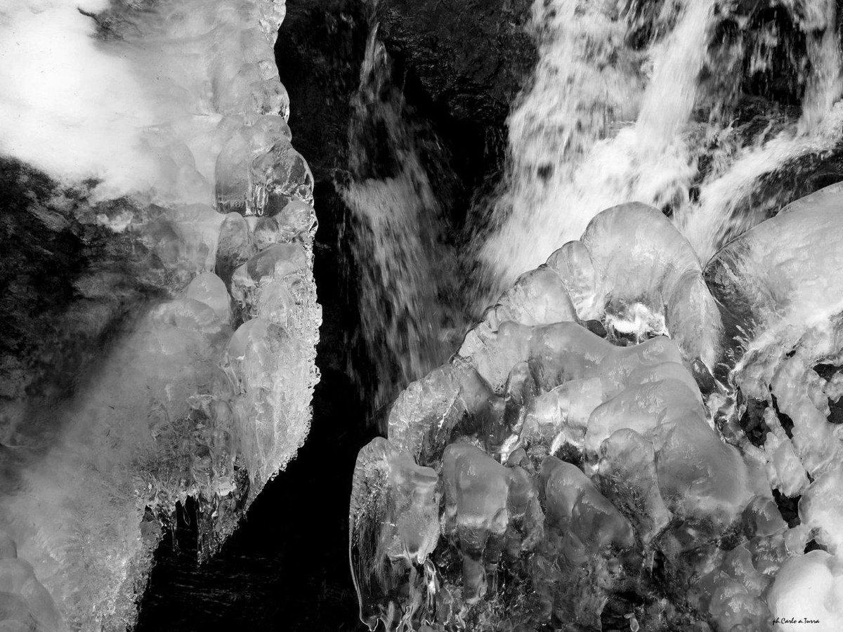 il racconto dell'#inverno #parcopan https://t.co/C...