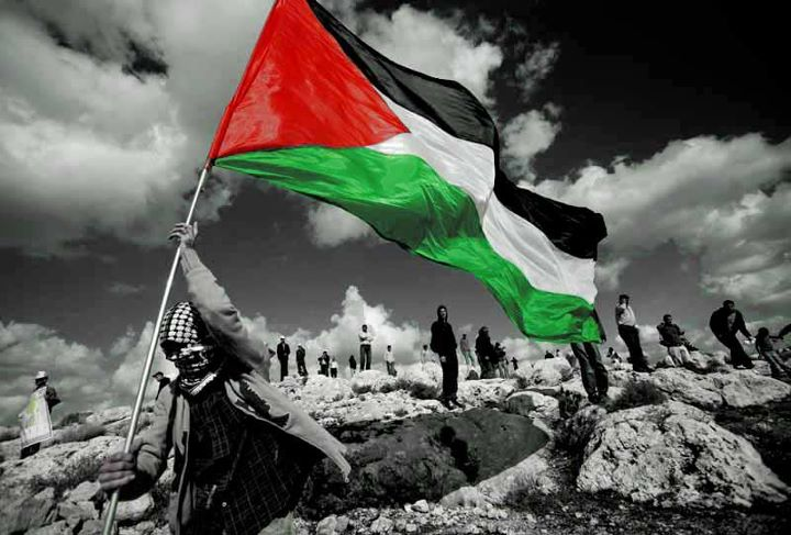 #Palestina