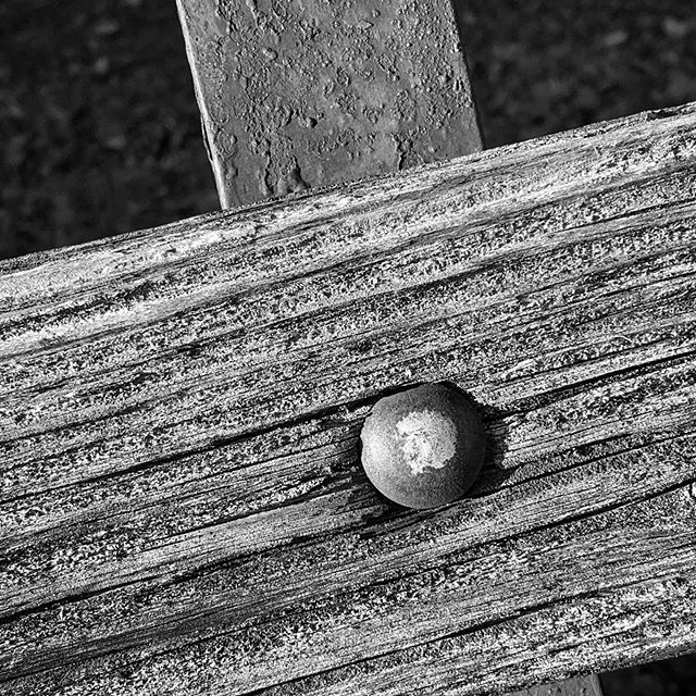 Park bench #wood #old #weathered #blackandwhite #bnw_detaillovers #closeup  https://e-b.photographypic.twitter.com/750dGXmnGl