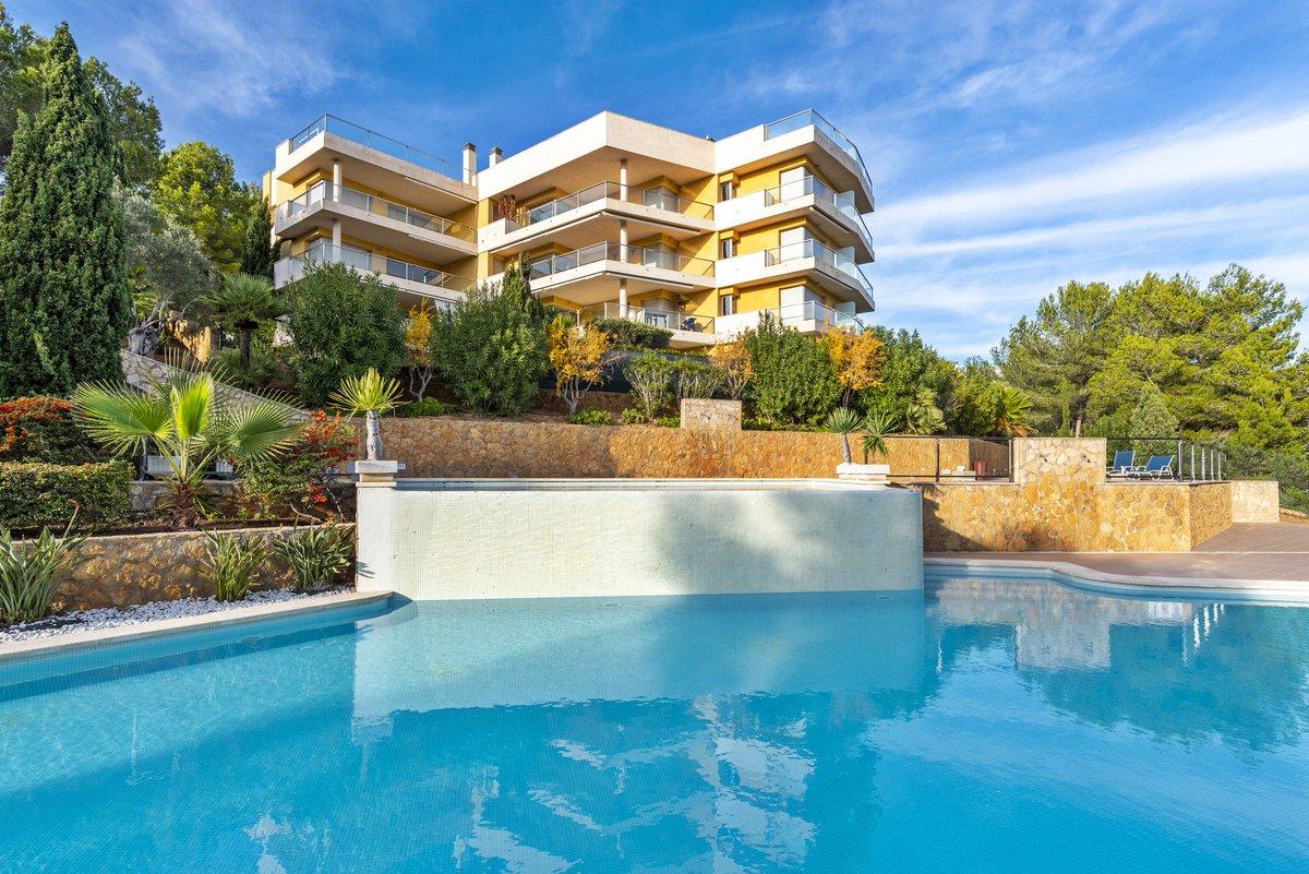 - Wir bringen Sie auf die Insel.  Garten-Appartement in einer gepflegten Anlage in Sol de Mallorca.  Preis :  649.000,-- Euro  https://www.pur-mallorca.com/immo/id-1901-luxus-erdgeschosswohnung-mit-gartenblick/…  #Mallorca #soldemallorca #PURMallorca #appartement #baleares #mallorcalove #propertyforsale #mallorcasouthwestpic.twitter.com/xuRheTjCLu