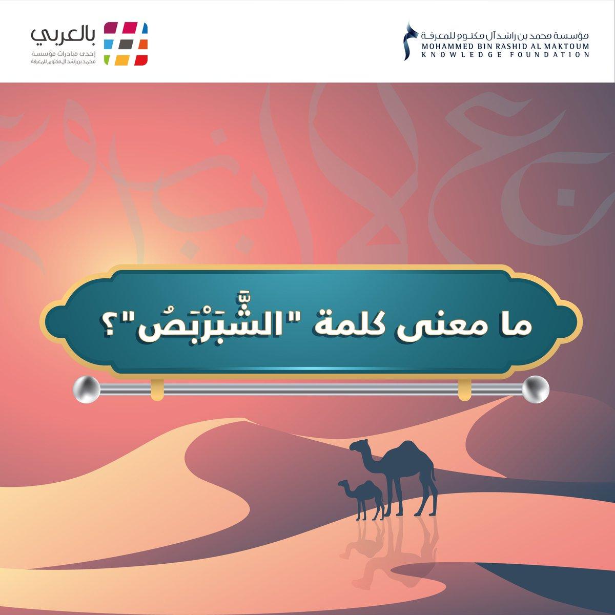 """بالعربي on Twitter: """"ما معنى كلمة الشَّبَرْبَصُ في جملة """"رأينا شبربصاً في  رحلتنا الأخيرة إلى الصحراء""""؟ #مؤسسة_محمد_بن_راشد_للمعرفة #بالعربي  #اللغة_العربية #لغة_الضاد… https://t.co/kD4Z5PnWsr"""""""