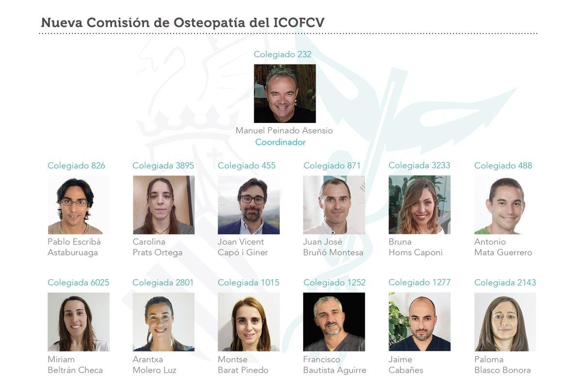 Nueva #Comisión de #Osteopatía del @Icofcv, impulsada por un grupo de colegiados. Entre sus objetivos:   Poner en valor la formación en osteopatía del fisioterapeuta   Acreditar la evidencia científica de esta  Contactar con comisiones homólogas  https://www.colfisiocv.com/Nueva_Comision_Osteopatia…pic.twitter.com/UQP1eOkCfE