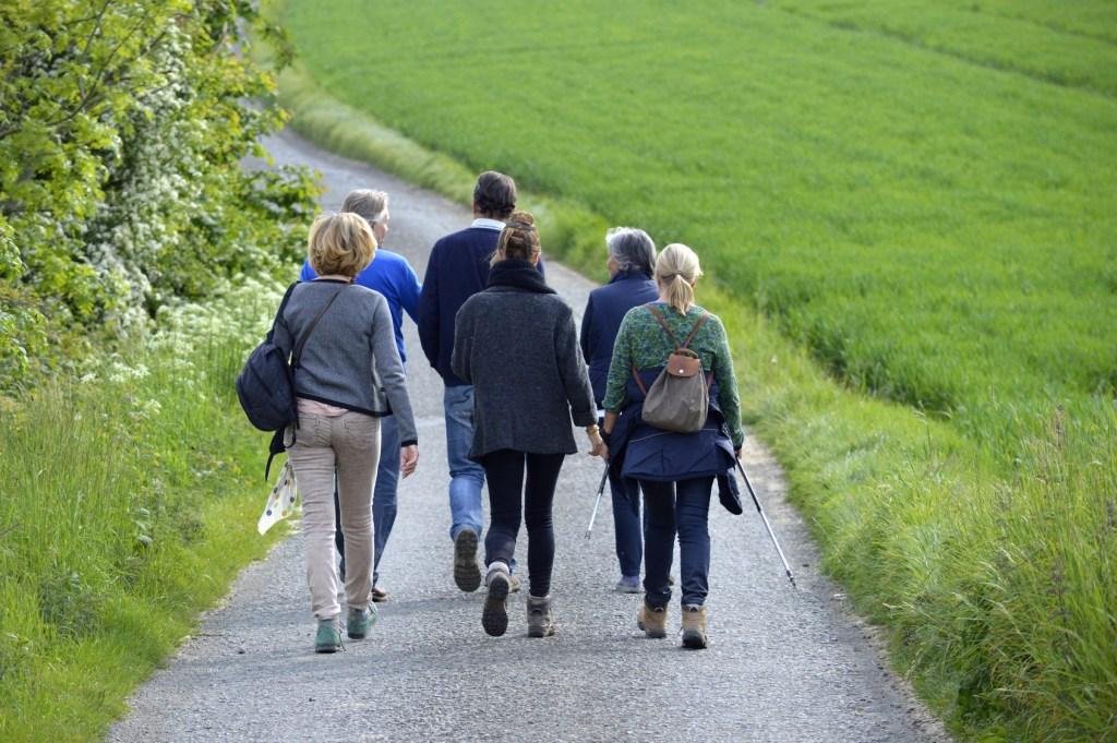 Spazieren gehen in netterGesellschaft https://tausendfuessler-stiftung.de/aktuell/termine/spazieren-gehen-in-netter-gesellschaft-3/…pic.twitter.com/oZ2x5tn0v3
