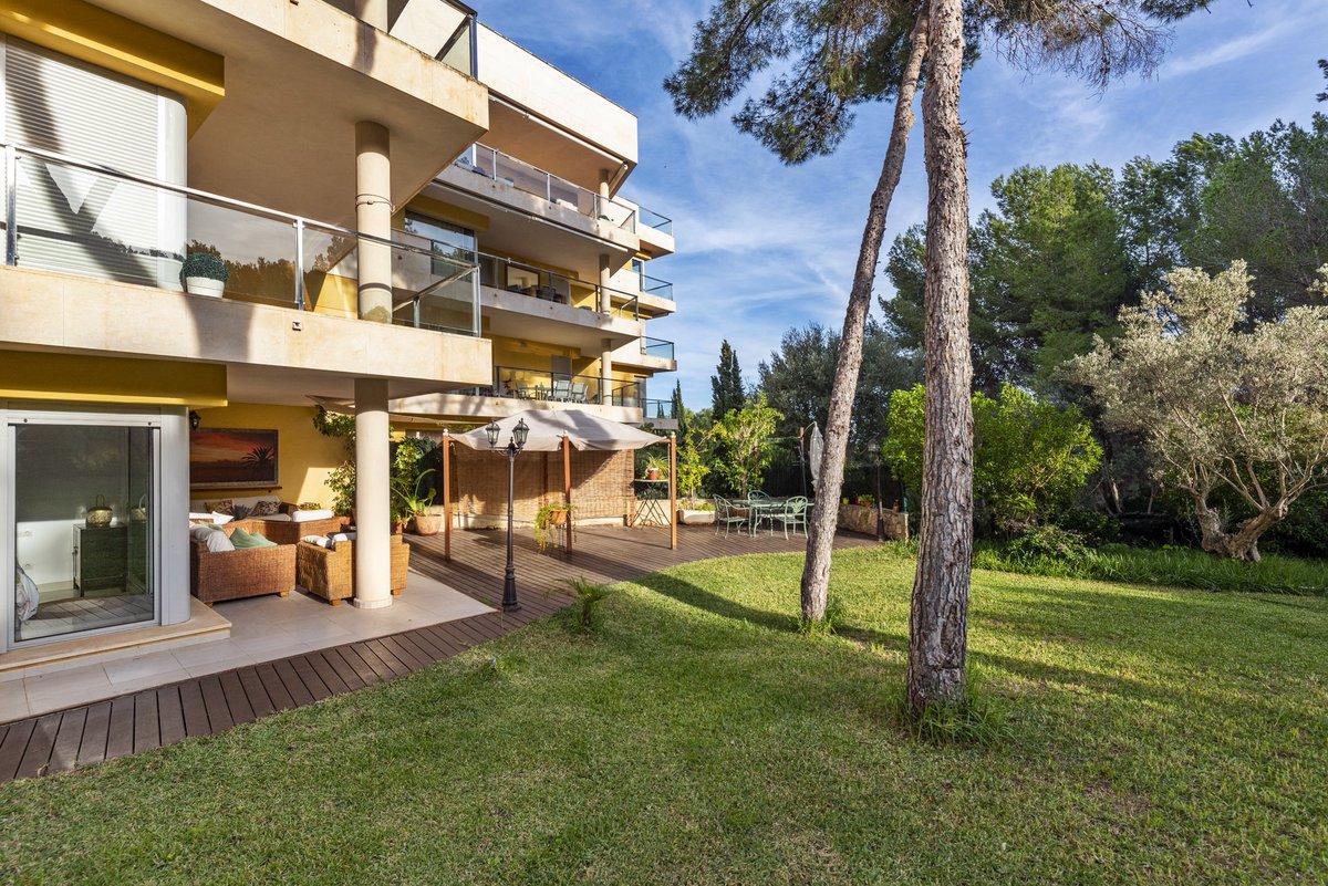 - Wir bringen Sie auf die Insel.  Garten-Appartement in einer gepflegten Anlage in Sol de Mallorca.  Preis :  649.000,-- Euro  https://www.pur-mallorca.com/immo/id-1901-luxus-erdgeschosswohnung-mit-gartenblick/…  #Mallorca #soldemallorca #PURMallorca #appartement #baleares #mallorcalove #propertyforsale #mallorcasouthwestpic.twitter.com/5gL3uKZ99v