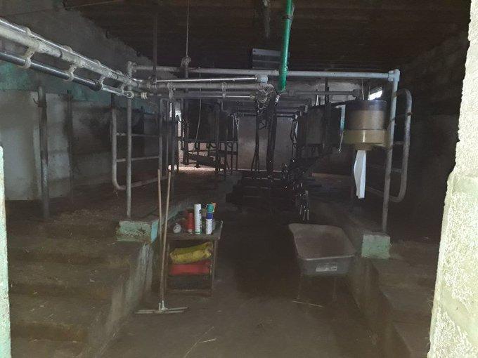EDF pas de trêve hivernale pour les vaches  EPcophxWkAAOd1K?format=jpg&name=small