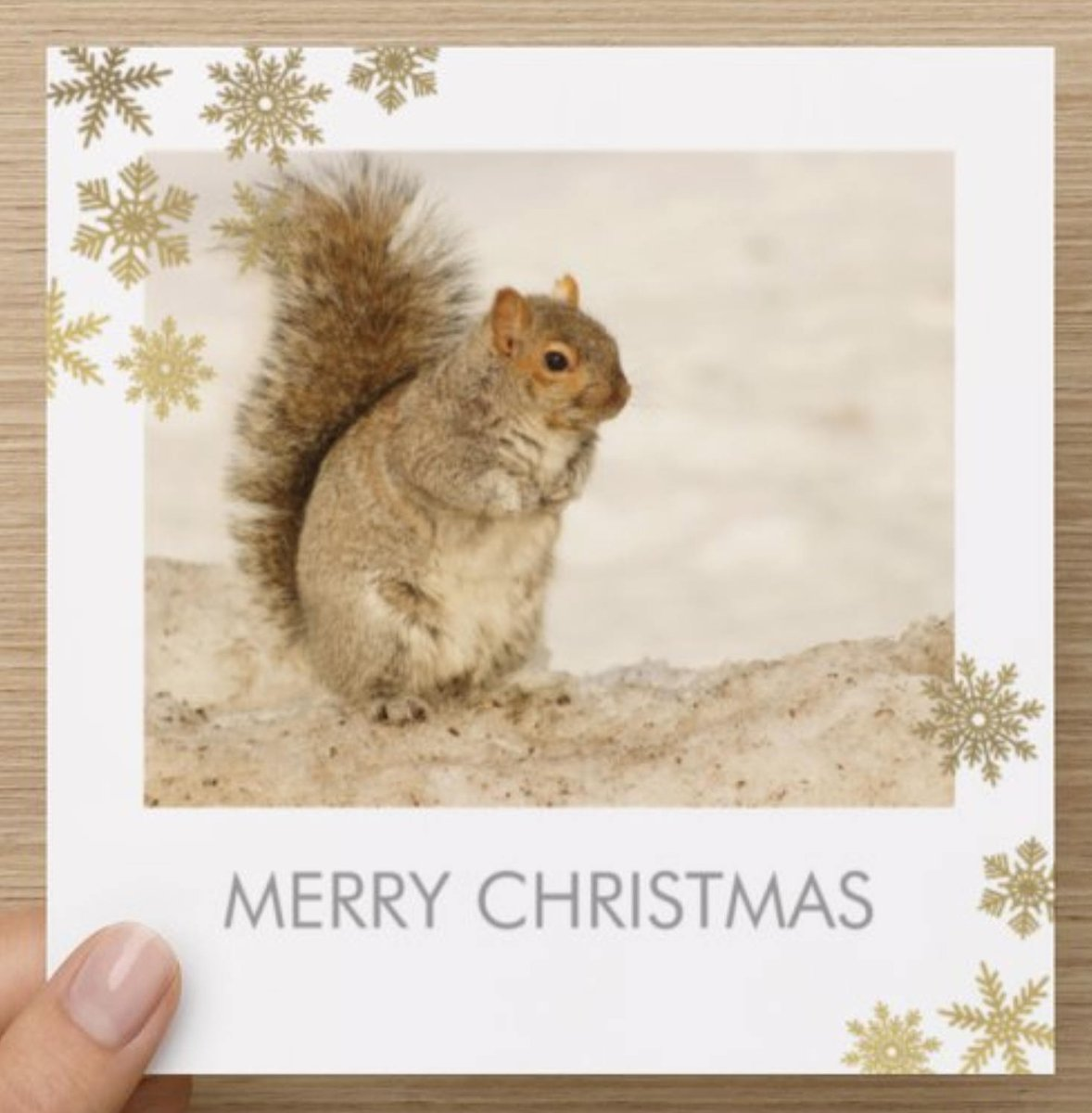 Christmas Greeting Card Christmas Cards Carte de Noel Blank Greeting Card Blank Card Blank Christmas Card Handmade Christmas Card  #gift #sale #photography #nature #Wallart #NaturisticImages #Etsy #ChristmasCard