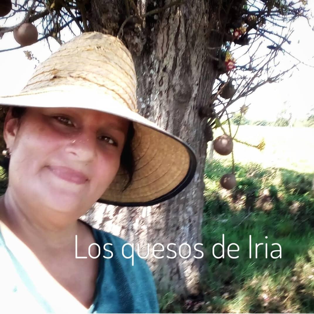 Les presento los quesos de Iria Castellano. A ella no le pregunten recetas porque los hace por pura intuición pero tengan por seguro que todos los jueves saca su 80 k de queso entre duro, semiduro y ricota en su finca cerca de Santa Bárbara del Zulia pic.twitter.com/UpNBCVrrDk