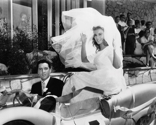 If only.....  #ElvisPresley #AnnMargret #VivaLasVegas #weddingphotography #LasVegas #60s #VintageLeisurepic.twitter.com/qcwXasO2eD