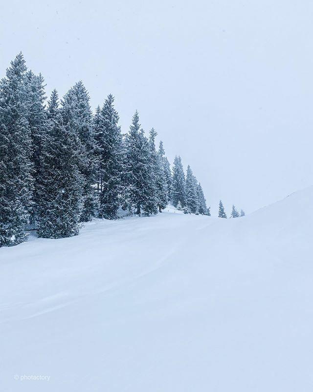 #tb to our ski holidays at @skiweltwilderkaiserbrixental  #neuschnee #lovetirol #visittirol #wilderkaiser #skiing #mountains #mountainlove #snowy #photactory #photactorytravels #naturephotography #naturelover #nature_perfection